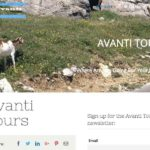 Portfolio Evolutionweb Avanti Tours